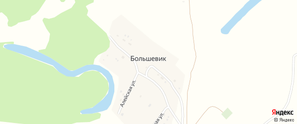 Школьная улица на карте поселка Большевика с номерами домов