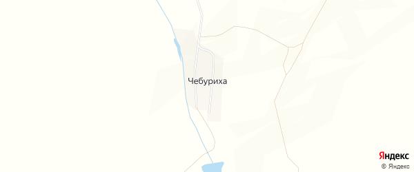 Карта поселка Чебурихи в Алтайском крае с улицами и номерами домов