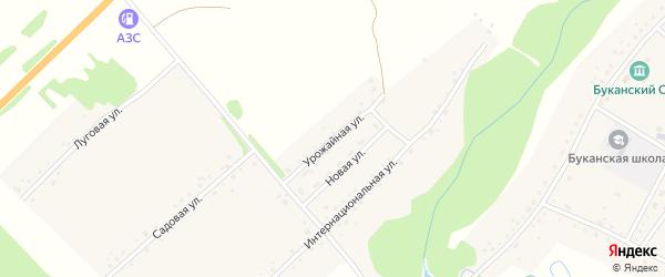 Урожайная улица на карте Буканского села с номерами домов
