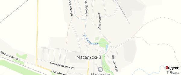 Карта Масальского поселка в Алтайском крае с улицами и номерами домов