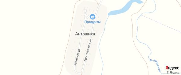 Центральная улица на карте села Антошихи с номерами домов