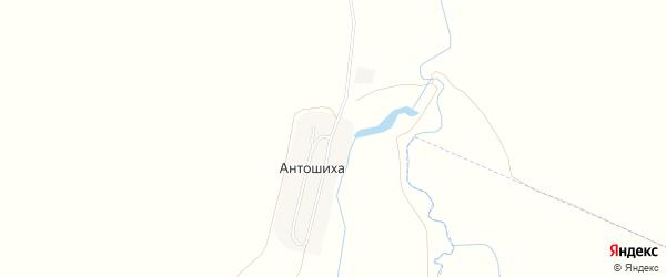 Карта села Антошихи в Алтайском крае с улицами и номерами домов