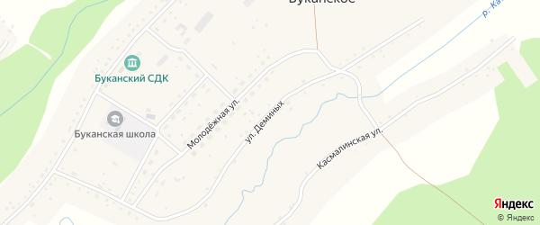 Улица Деминых на карте Буканского села с номерами домов