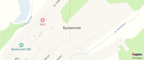 Восточная улица на карте Буканского села с номерами домов