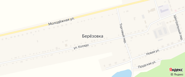 Берёзовская улица на карте села Березовки с номерами домов