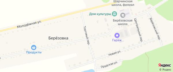 Торговый переулок на карте села Березовки с номерами домов