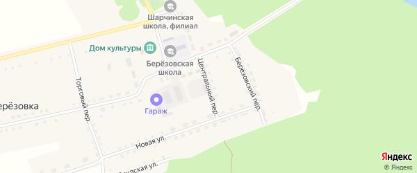 Центральный переулок на карте села Березовки с номерами домов