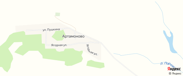 Карта поселка Артамоново в Алтайском крае с улицами и номерами домов