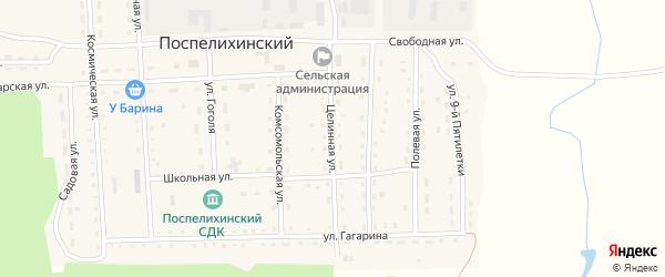Целинная улица на карте Поспелихинского поселка с номерами домов