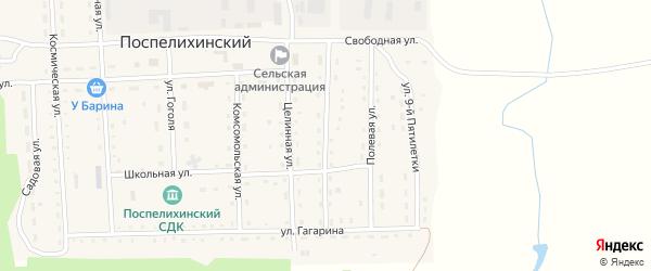 Улица Космодемьянской на карте Поспелихинского поселка с номерами домов