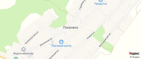 Молодёжная улица на карте села Покровки с номерами домов
