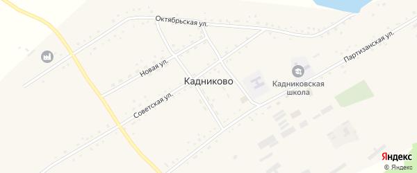 Молодежный переулок на карте села Кадниково с номерами домов