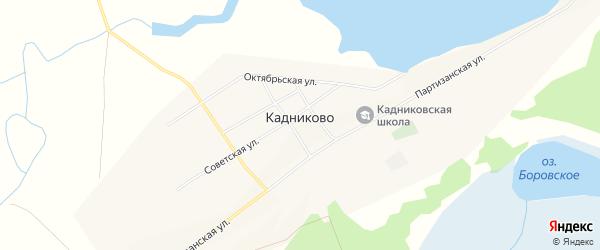 Карта села Кадниково в Алтайском крае с улицами и номерами домов