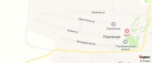 Новая улица на карте Порожнего села с номерами домов