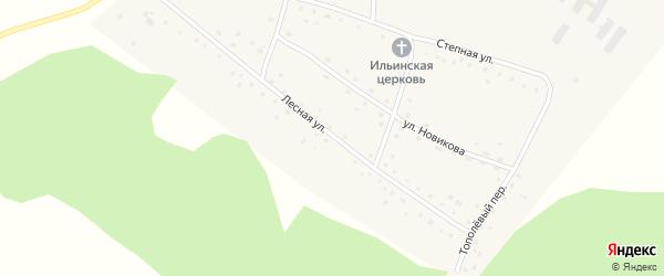 Лесная улица на карте Порожнего села с номерами домов