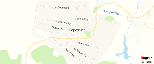 Карта Порожнего села в Алтайском крае с улицами и номерами домов