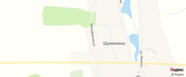 Молодежная улица на карте села Шумилихи с номерами домов