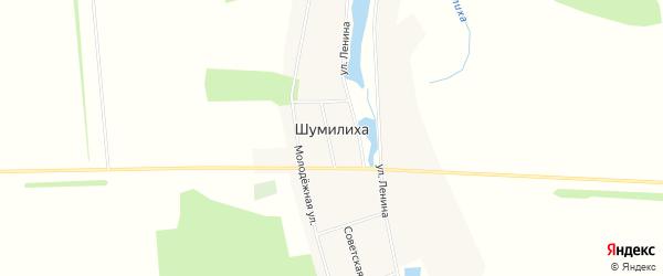 Карта села Шумилихи в Алтайском крае с улицами и номерами домов