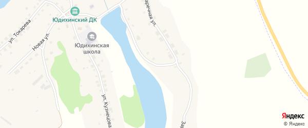 Заречная улица на карте села Юдихи с номерами домов