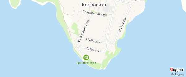 Новая улица на карте села Корболихи с номерами домов
