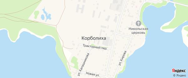 Береговая улица на карте села Корболихи с номерами домов