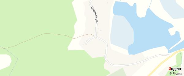 Боровая улица на карте села Макарово с номерами домов