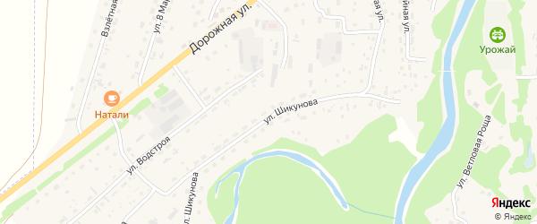 Улица Шикунова на карте Староалейского села с номерами домов