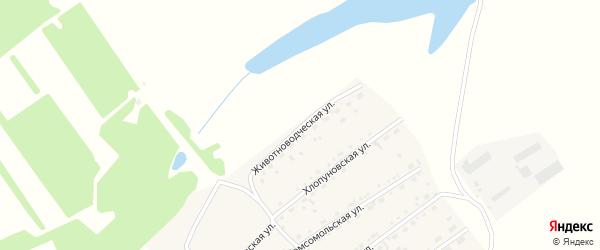 Животноводческая улица на карте села Родино с номерами домов