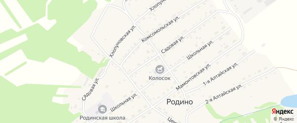 Садовая улица на карте села Родино с номерами домов