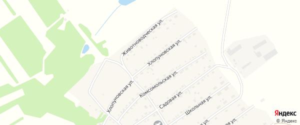 Хлопуновская улица на карте села Родино с номерами домов