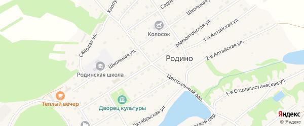 Мамонтовская улица на карте села Родино с номерами домов