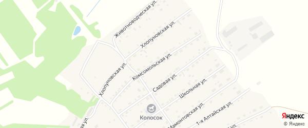 Комсомольская улица на карте села Родино с номерами домов