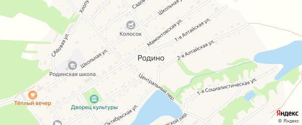 1-я Алтайская улица на карте села Родино с номерами домов