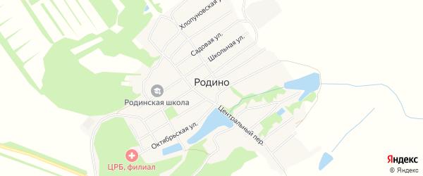 Карта села Родино в Алтайском крае с улицами и номерами домов