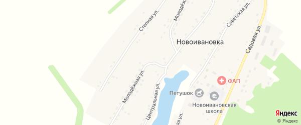 Молодежная улица на карте села Новоивановки с номерами домов