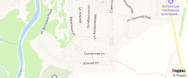 Полевая улица на карте Староалейского села с номерами домов