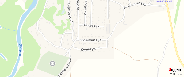 Солнечная улица на карте Староалейского села с номерами домов