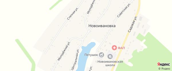 Центральная улица на карте села Новоивановки с номерами домов