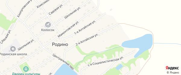 2-я Алтайская улица на карте села Родино с номерами домов