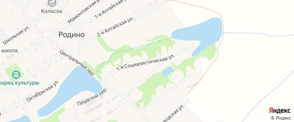 1-я Социалистическая улица на карте села Родино с номерами домов