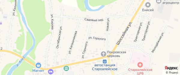 Улица Горького на карте Староалейского села с номерами домов