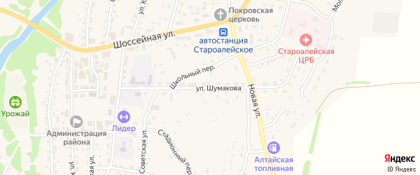 Улица Шумакова на карте Староалейского села с номерами домов