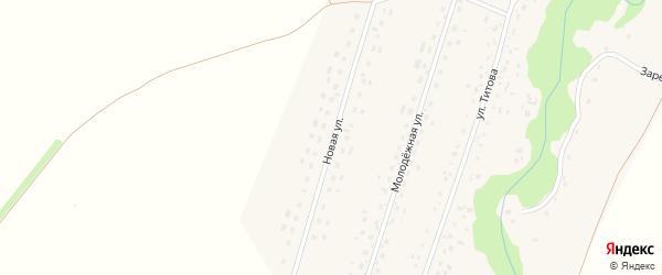 Новая улица на карте Екатерининского села с номерами домов