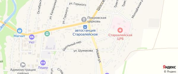 Школьный переулок на карте Староалейского села с номерами домов