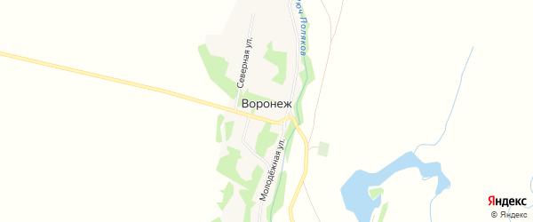 Карта поселка Воронежа в Алтайском крае с улицами и номерами домов
