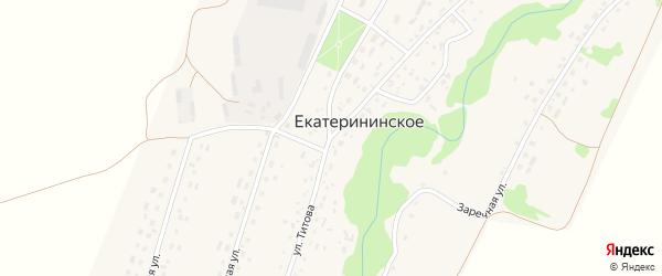 Улица Титова на карте Екатерининского села с номерами домов