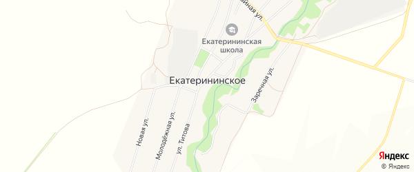 Карта Екатерининского села в Алтайском крае с улицами и номерами домов
