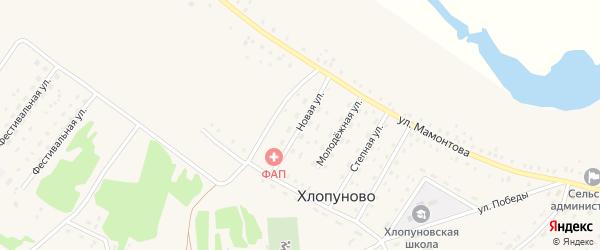 Новая улица на карте села Хлопуново с номерами домов