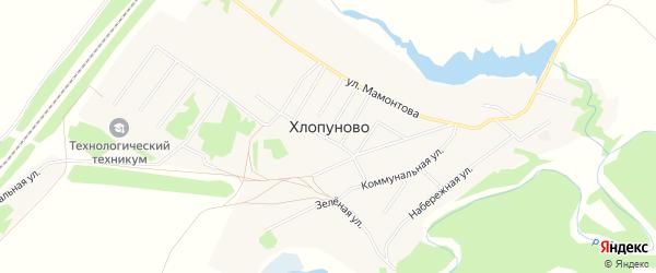 Карта села Хлопуново в Алтайском крае с улицами и номерами домов