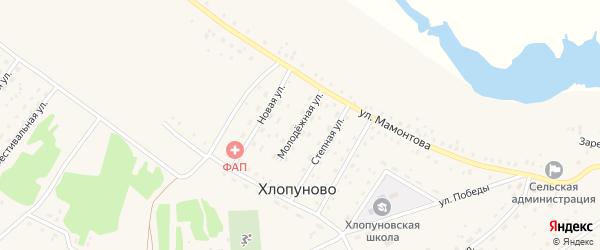 Молодежная улица на карте села Хлопуново с номерами домов
